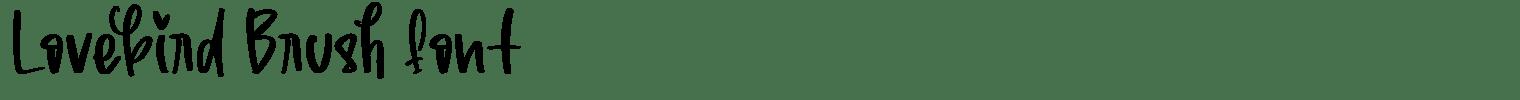 Lovebird Brush Font