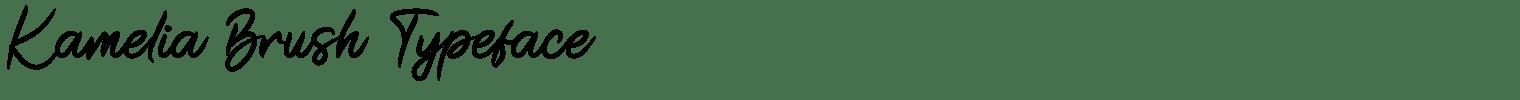 Kamelia Brush Typeface