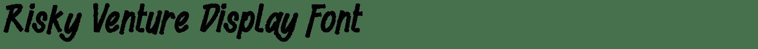 Risky Venture Display Font