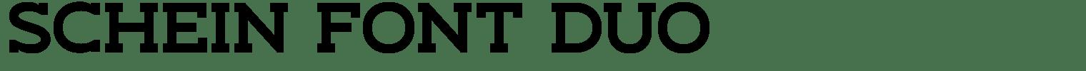 Schein Font Duo