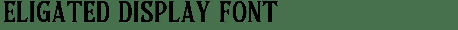 Eligated Display Font