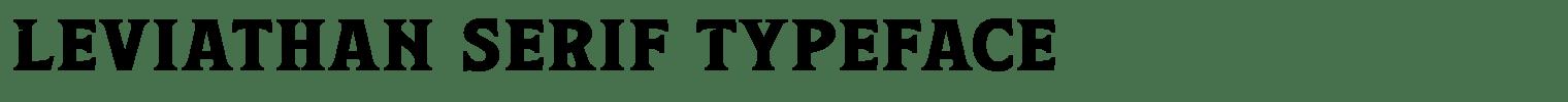 Leviathan Serif Typeface