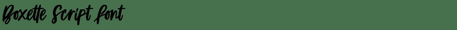Boxette Script Font