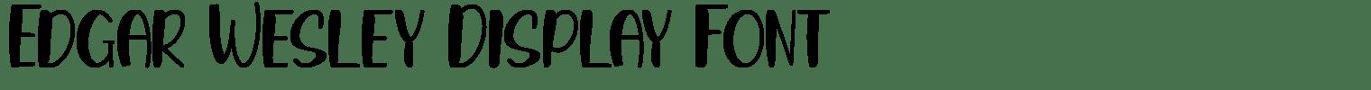 Edgar Wesley Display Font