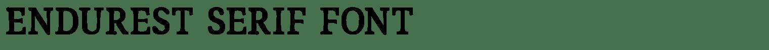 Endurest Serif Font
