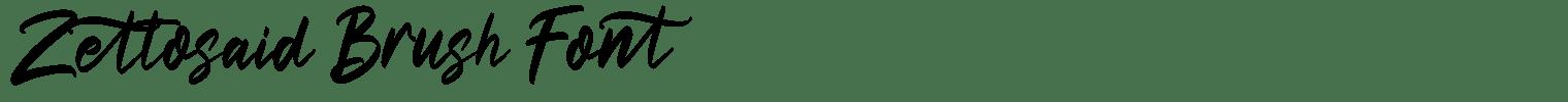 Zettosaid Brush Font