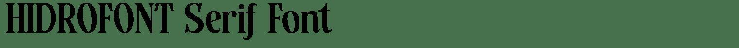 HIDROFONT Serif Font