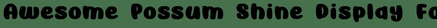 Awesome Possum Shine Display Font