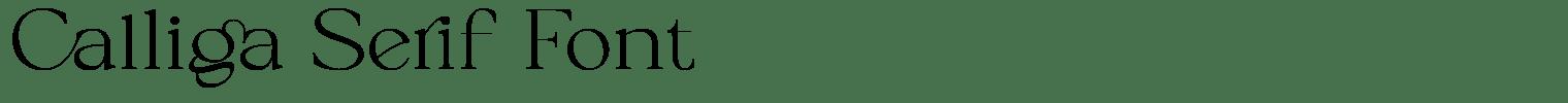 Calliga Serif Font