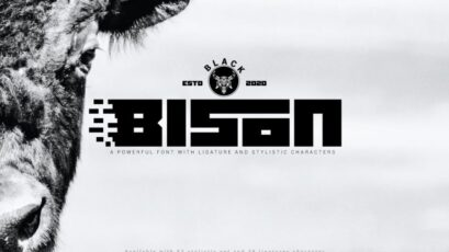 Black Bison