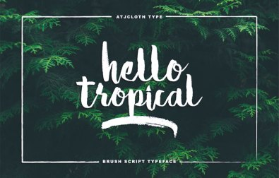 hello-tropical