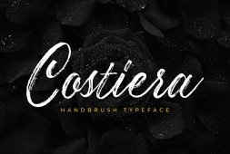 costiera-elegant-handbrush