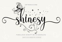 shinesy