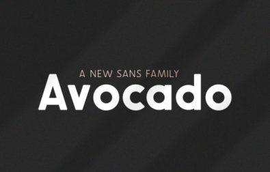 avocado-family