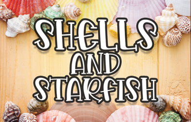 shells-and-starfish