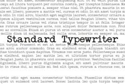standard-typewriter