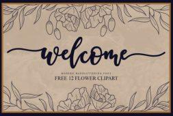 welcome-script