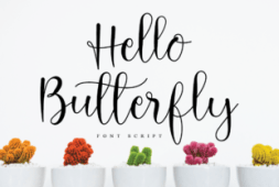 hello-butterfly