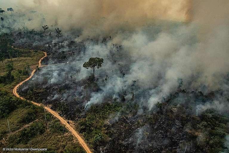 Salles anuncia criação de fundo com BID para Amazônia