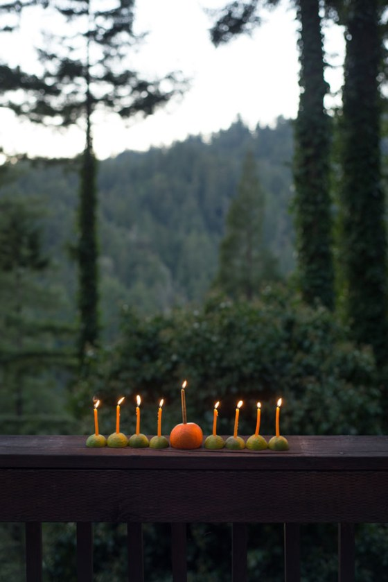 forest feast hannukah candles