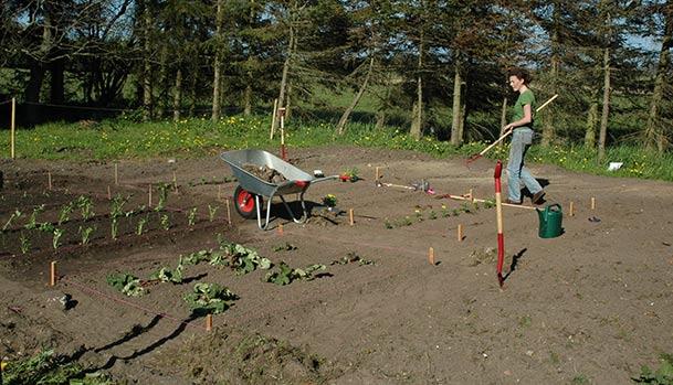 The first kitchen garden