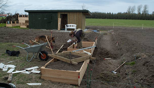 The second kitchen garden