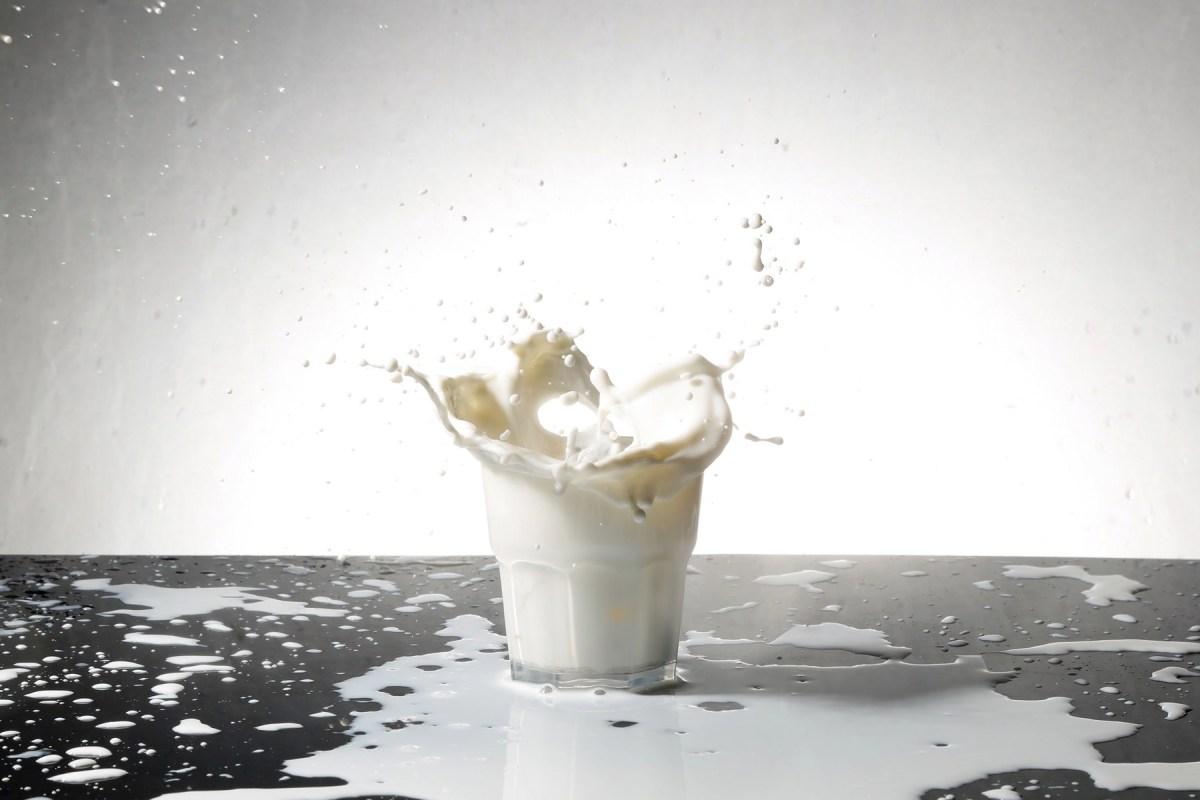 Срок годности молочных продуктов: что на него влияет и как его продлить