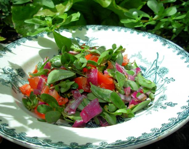 Wild Purslane Salad  with Olive Oil  and Lemon Dressing
