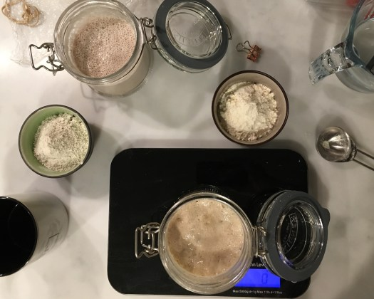 Feeding sourdough starters