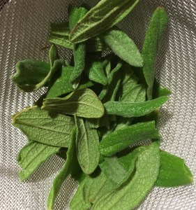Sage leaves, drained in a colander
