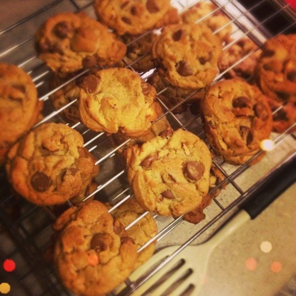 cookie-love