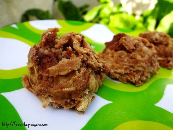 no-bake-cookie-bliss