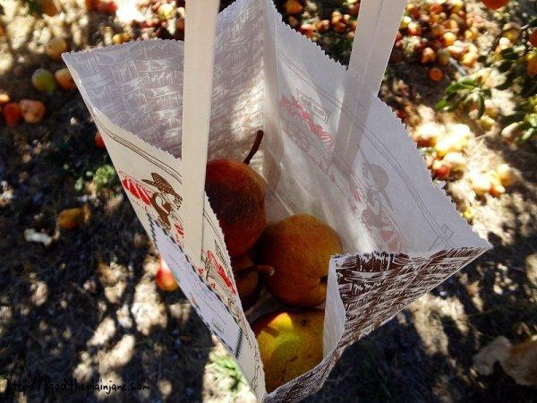 gathering-bag-pears
