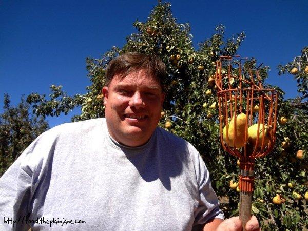 jake-fruit-picker
