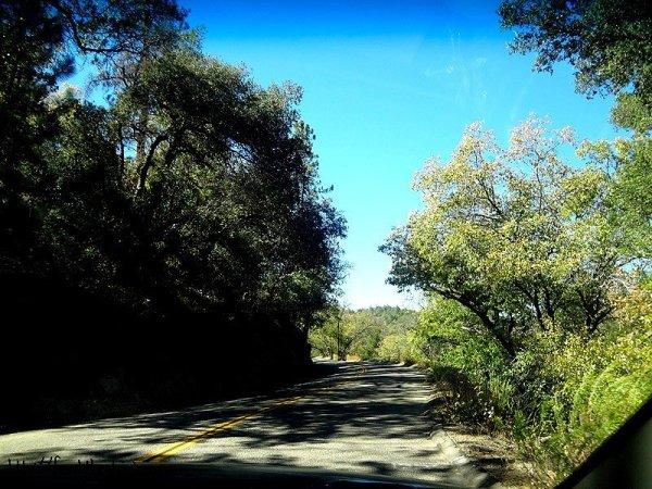 road-to-julian
