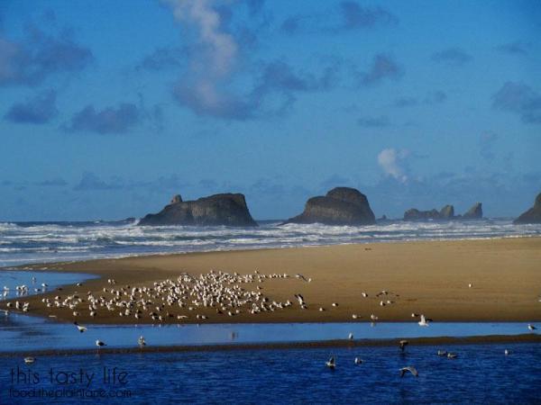 haystock-rocks-cannon-beach-goonies