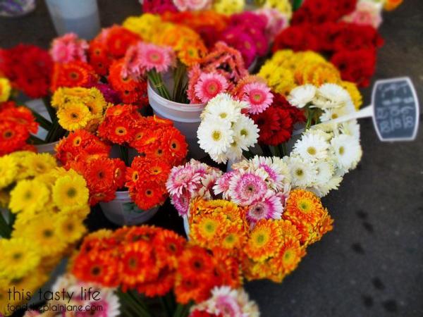 geber-daisies