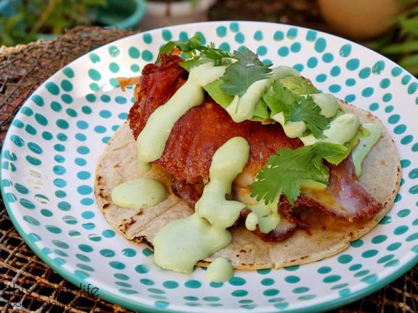 Quesataco with Avocado and Cilantro Garlic Sauce