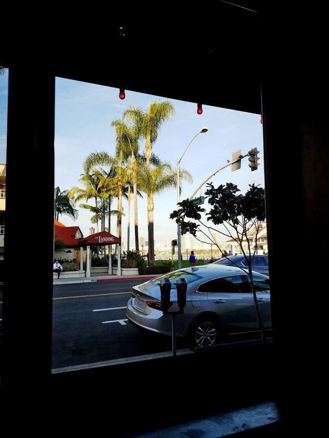 Window View - Nicky Rottens Coronado