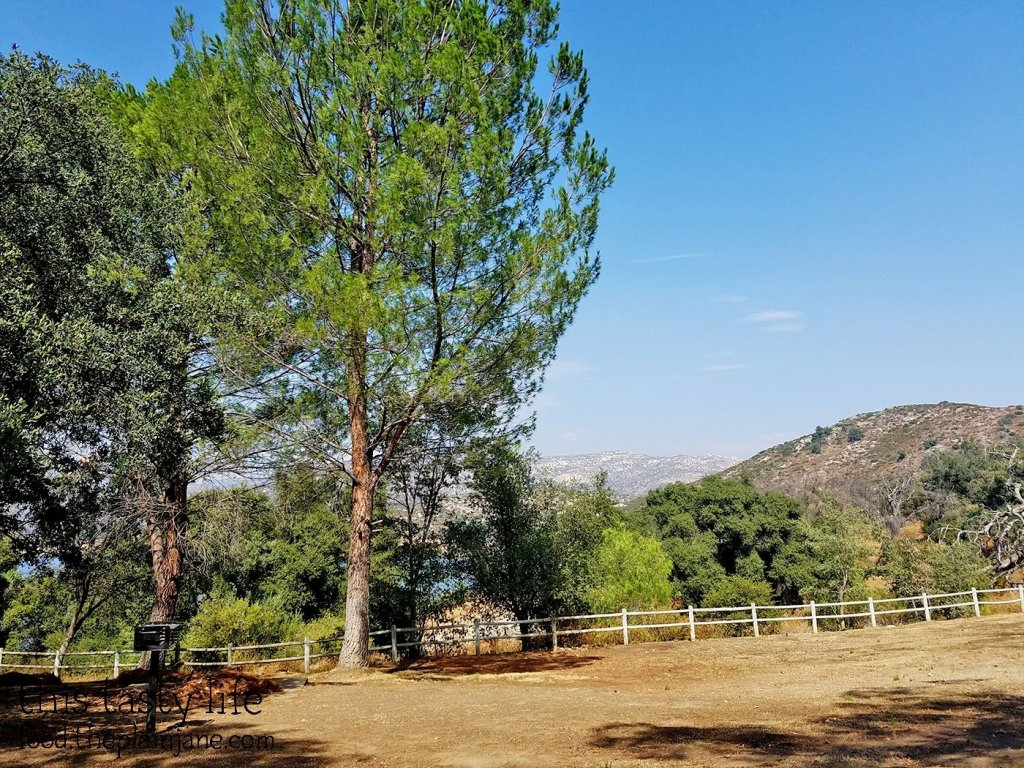 Picnic Area at Lake Sutherland - Ramona, CA
