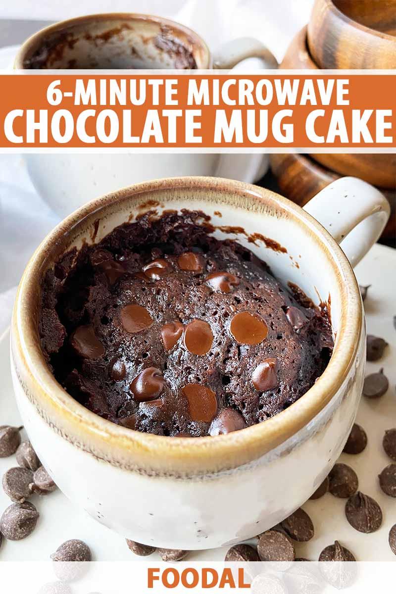 6 minute chocolate microwave mug cake