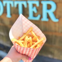 Sea World San Diego Food Allergy Finds Volume I