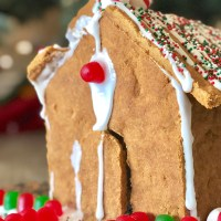 Gingerbread House & Royal Icing