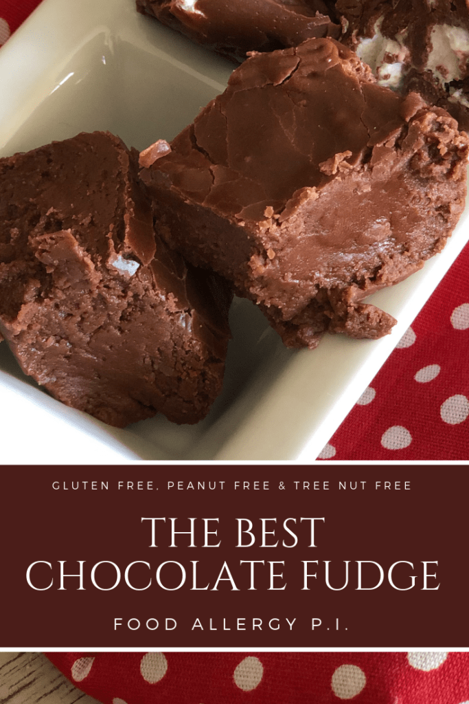 The Best Chocolate Fudge Recipe | Gluten Free | Peanut Free | Tree Nut Free