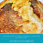 Sourdough Bread Recipe | Whole Wheat | Allergy Friendly | All-Purpose Flour | Gluten Free Recipe | How To Tips & Tricks
