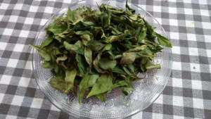 how to preserve curry leaves 2