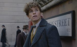 Cosplay We Like : Newt Scamander