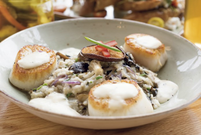 Pan seared jumbo scallops with Sheltowee Farms wild mushroom risotto.