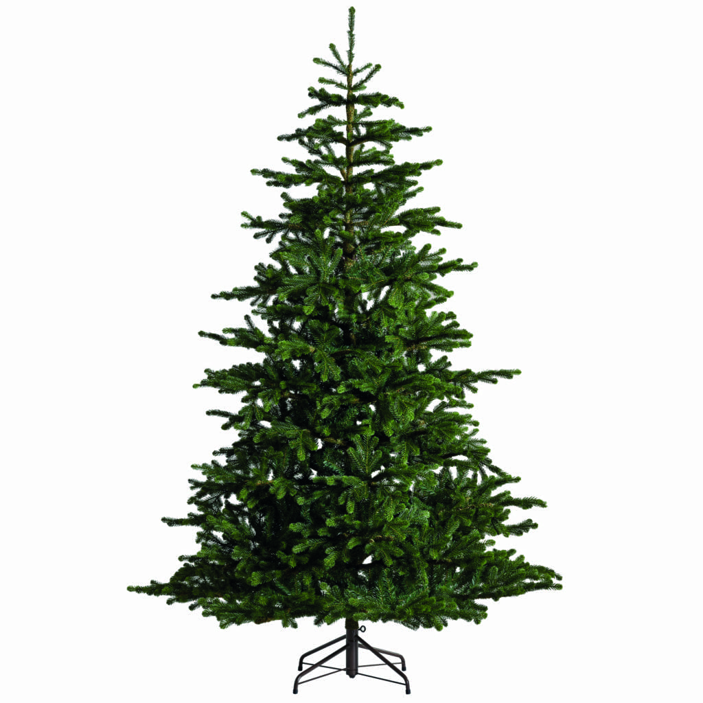 Best 28 Christmas Trees At Lewis Blue Christmas Trees