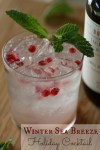 Winter-Sea-Breeze-Holiday-Cocktail-Recipe-580x869